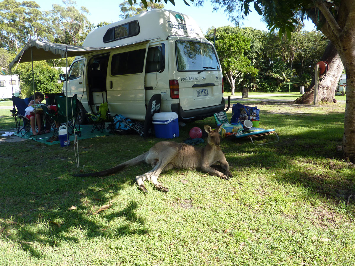 Gallery Calypso Campervans Campervan Rentals Four